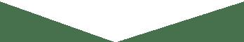 Arrow-Down-White-0819